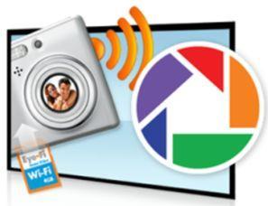 Логотип - Picasa