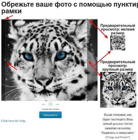gravatar - редактирование аватара