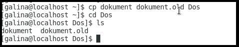 копируем 2 файла в один каталог