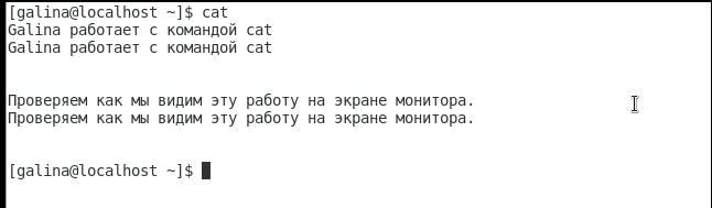 команда cat