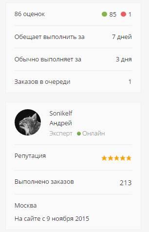 где найти исполнителя или заработать в интернете - обзор и отзывы биржи фриланска kwork - скриншот 6 - карточка автора