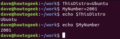 15 специальных символов-команд, которых нужно знать для работы Bash Linux - скриншот 31