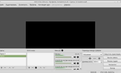захват видео на linux mint - скриншот 2