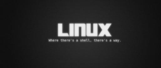 «Линуксовый» пакет обучения - картинка